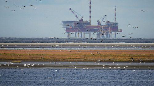 Fitch: Fosil Yakıt İhracatçıları Uzun Vadeli Risk ile Karşı Karşıya